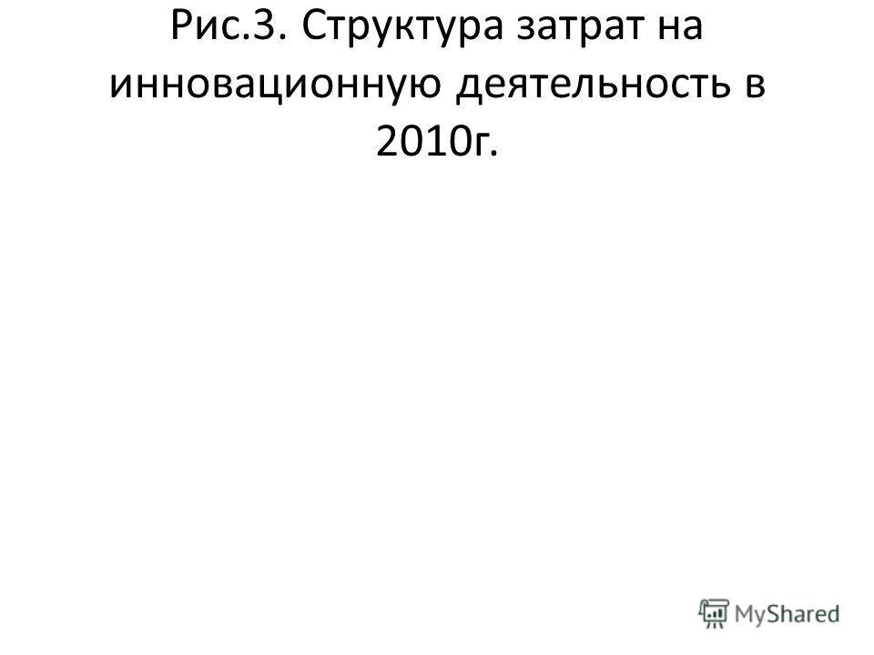 Рис.3. Структура затрат на инновационную деятельность в 2010г.