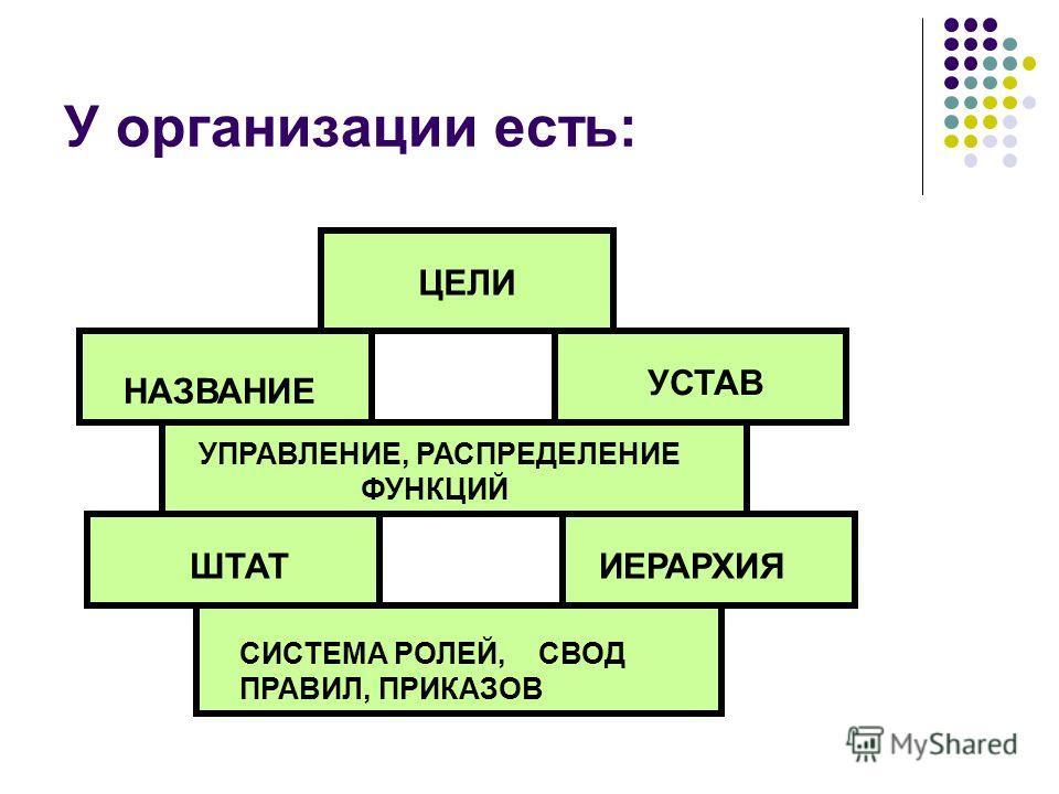 У организации есть: ЦЕЛИ НАЗВАНИЕ УСТАВ УПРАВЛЕНИЕ, РАСПРЕДЕЛЕНИЕ ФУНКЦИЙ ШТАТИЕРАРХИЯ СИСТЕМА РОЛЕЙ, СВОД ПРАВИЛ, ПРИКАЗОВ