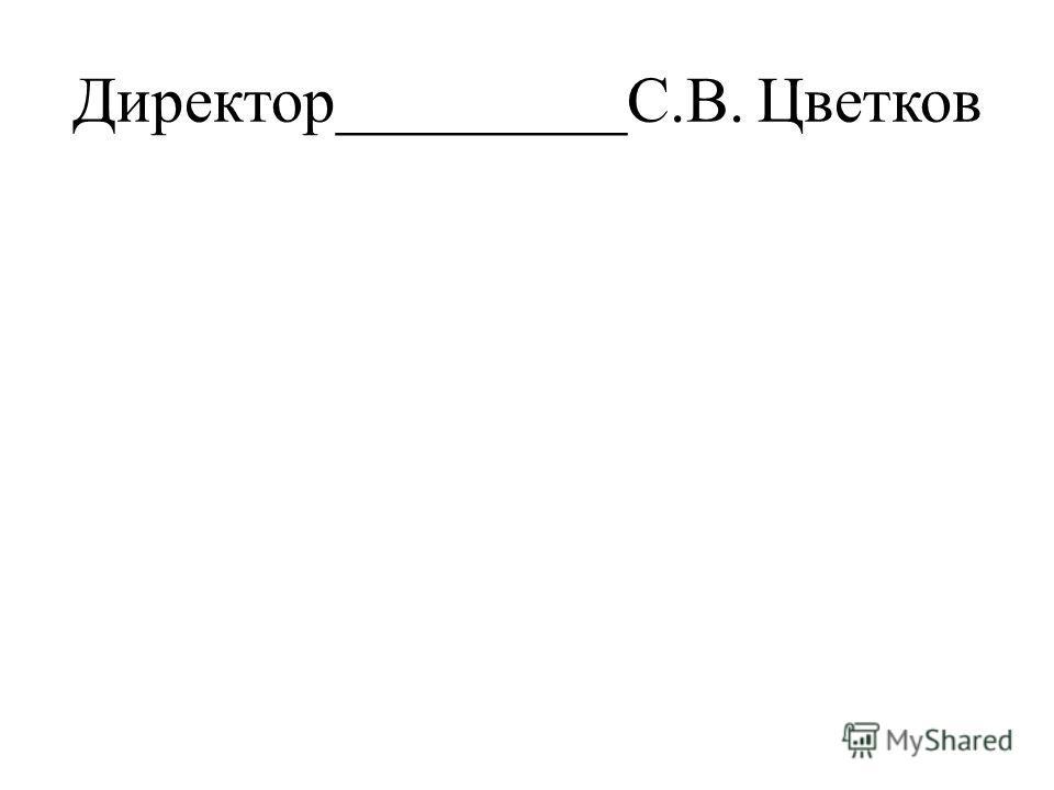 Директор_________С.В. Цветков