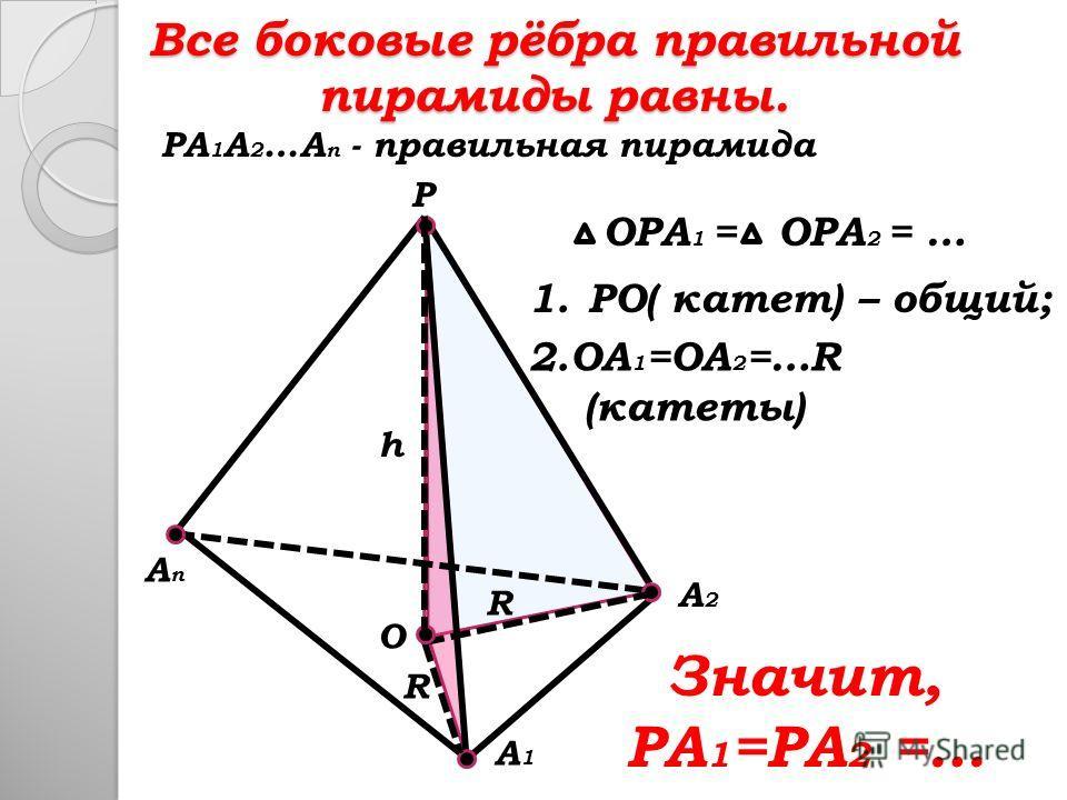 1.PO( катет) – общий; Все боковые рёбра правильной пирамиды равны. P A2A2 AnAn A1A1 PA 1 A 2 …A n - правильная пирамида O h R R OPA 1 =OPA 2 = … 2.OA 1 =OA 2 =…R (катеты) Значит, PA 1 =PA 2 =…