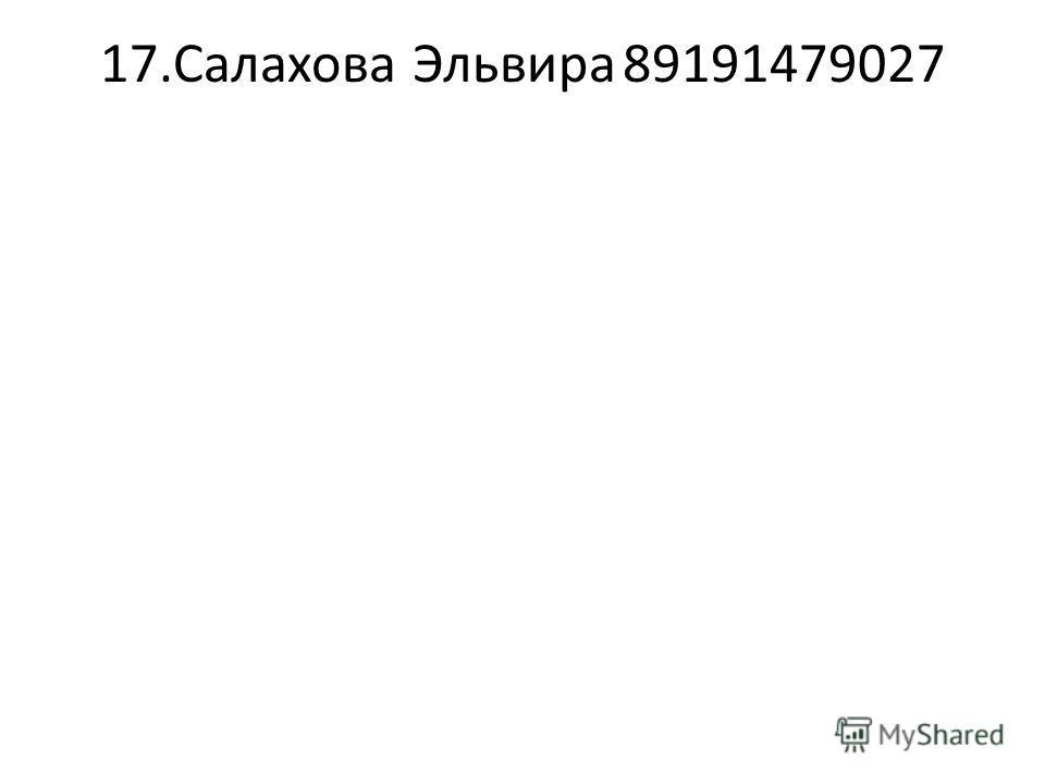 17.Салахова Эльвира89191479027