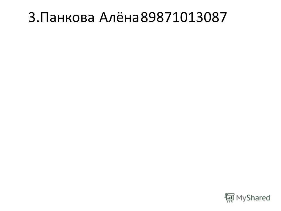 3.Панкова Алёна89871013087
