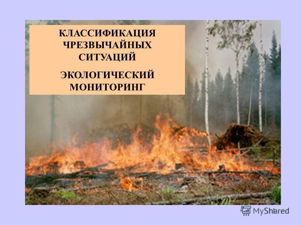 КЛАССИФИКАЦИЯ ЧРЕЗВЫЧАЙНЫХ СИТУАЦИЙ ЭКОЛОГИЧЕСКИЙ МОНИТОРИНГ 1