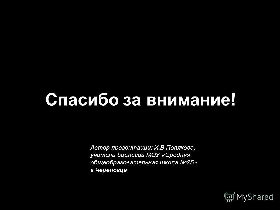 Спасибо за внимание! Автор презентации: И.В.Полякова, учитель биологии МОУ «Средняя общеобразовательная школа 25» г.Череповца