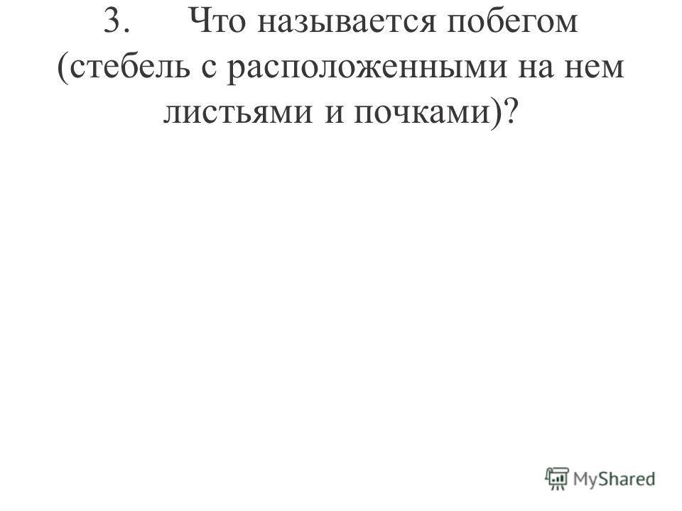 3. Что называется побегом (стебель с расположенными на нем листьями и почками)?