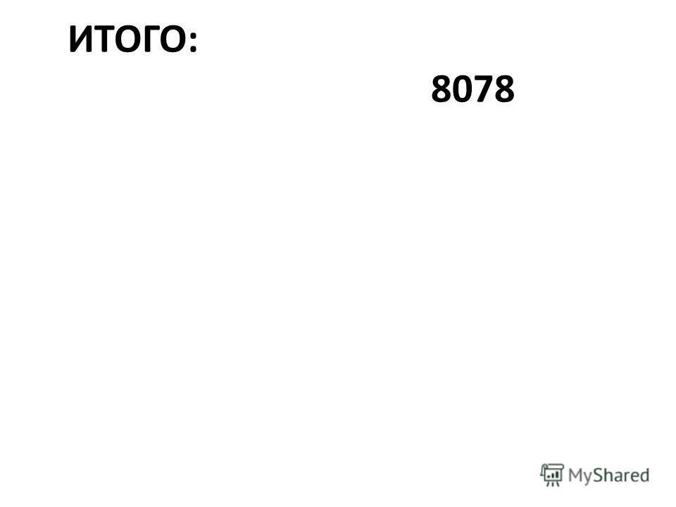 ИТОГО: 8078