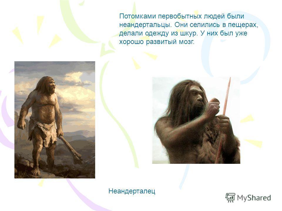 Потомками первобытных людей были неандертальцы. Они селились в пещерах, делали одежду из шкур. У них был уже хорошо развитый мозг. Неандерталец