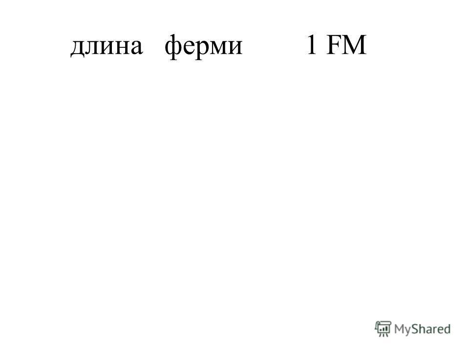 длинаферми1 FM