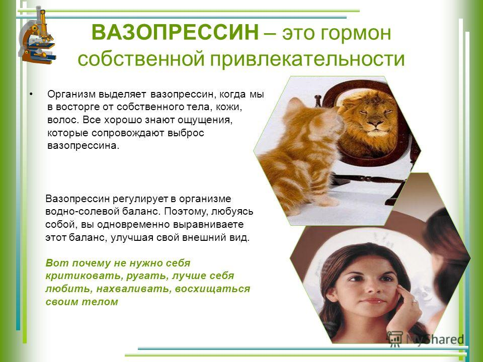 ВАЗОПРЕССИН – это гормон собственной привлекательности Организм выделяет вазопрессин, когда мы в восторге от собственного тела, кожи, волос. Все хорошо знают ощущения, которые сопровождают выброс вазопрессина. Вазопрессин регулирует в организме водно