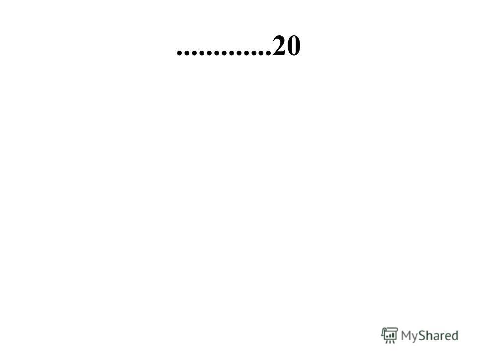 .............20