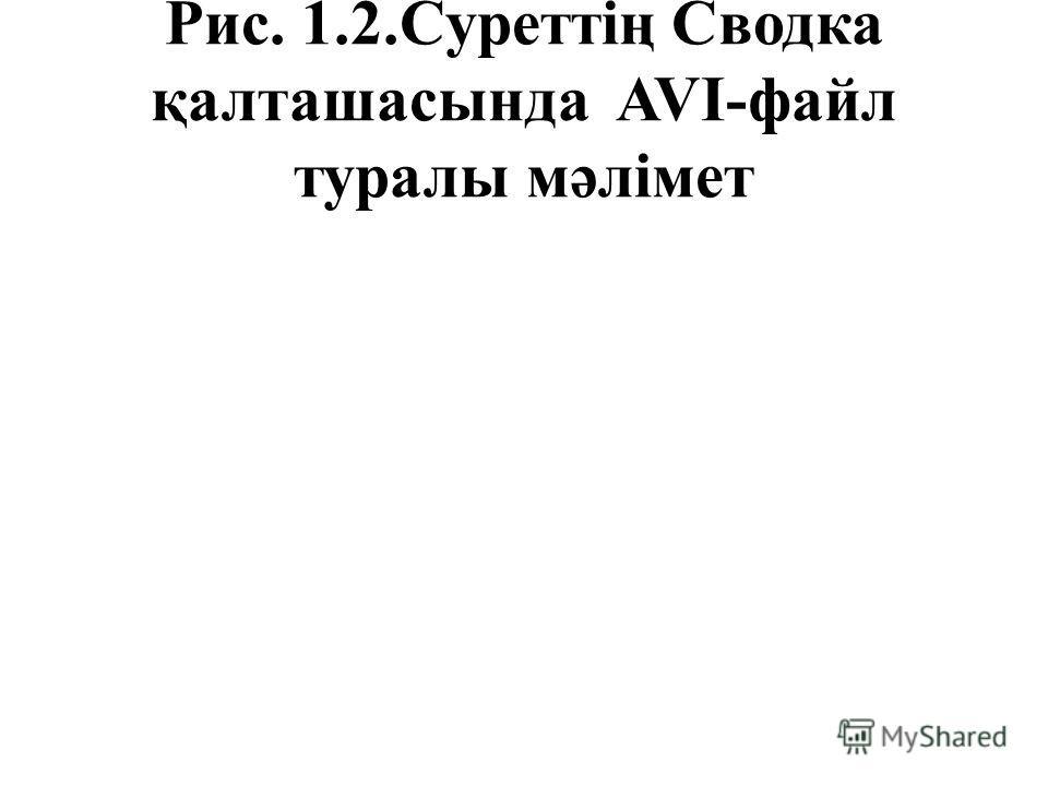 Рис. 1.2.Суреттің Сводка қалташасында AVI-файл туралы мәлімет