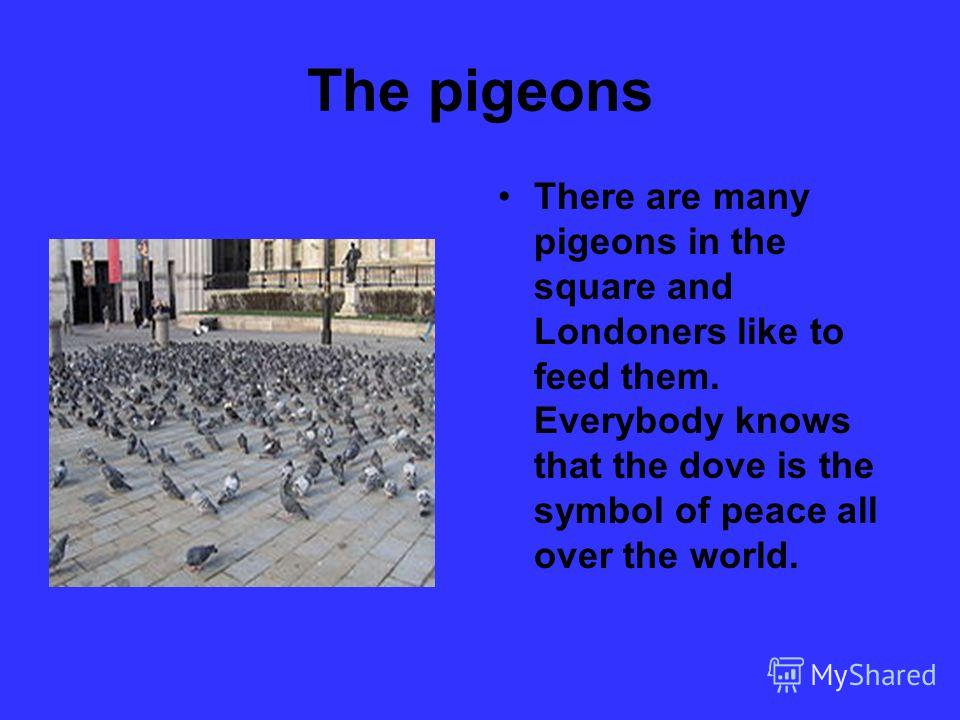 The pigeons There are many pigeons in the square and Londoners like to feed them. Everybody knows that the dove is the symbol of peace all over the world.