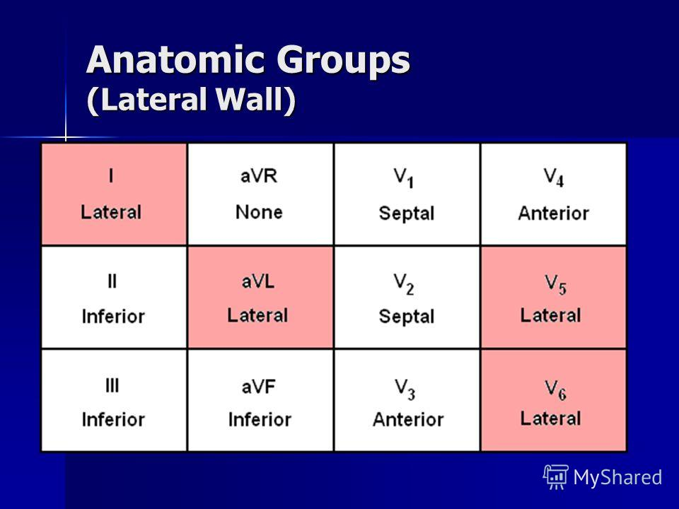 Anatomic Groups (Anterior Wall)