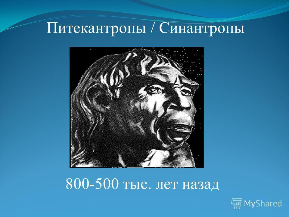 Питекантропы / Синантропы 800-500 тыс. лет назад