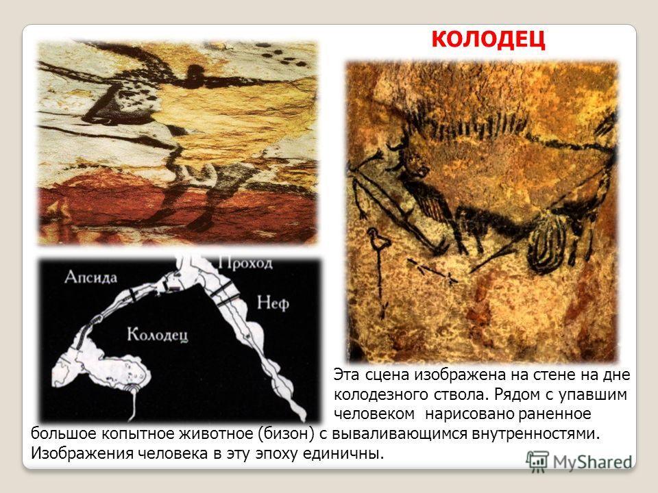 КОЛОДЕЦ Эта сцена изображена на стене на дне колодезного ствола. Рядом с упавшим человеком нарисовано раненное большое копытное животное (бизон) с вываливающимся внутренностями. Изображения человека в эту эпоху единичны.