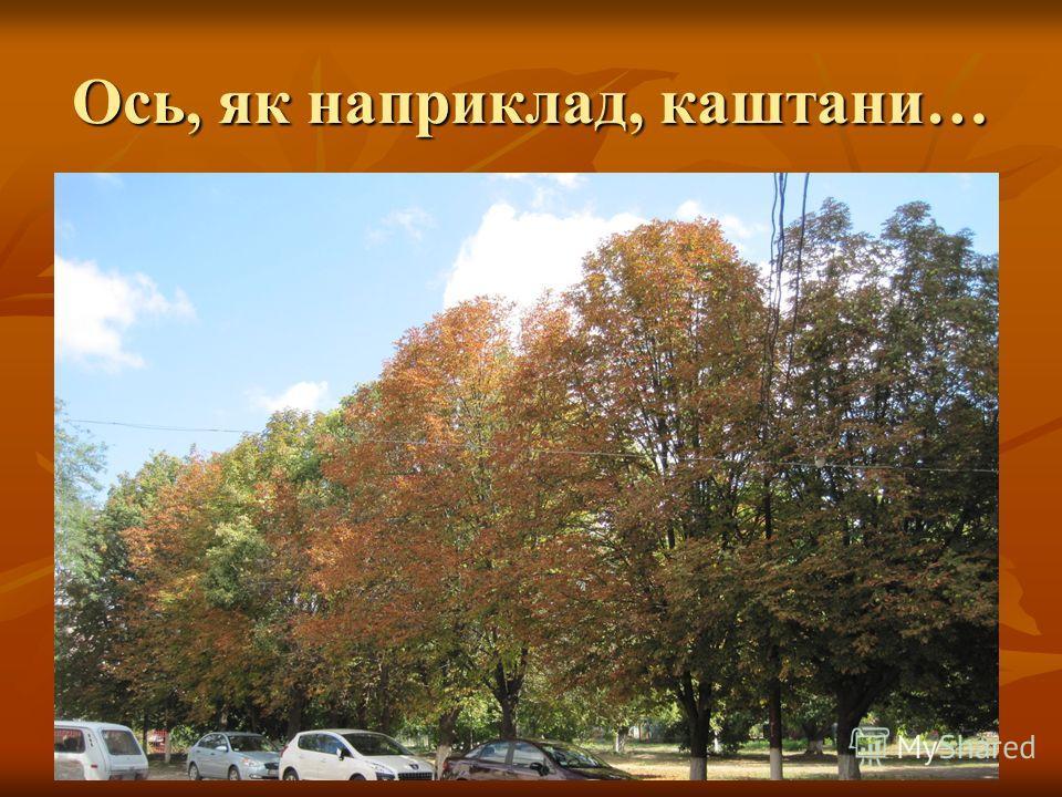 Ось і настала осінь подекуди ще