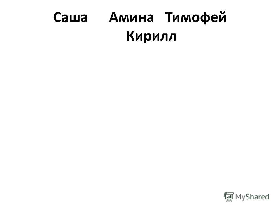 СашаАминаТимофей Кирилл