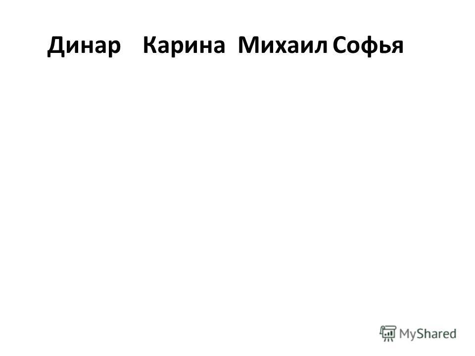 ДинарКаринаМихаилСофья