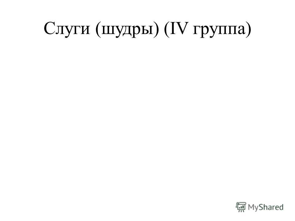 Слуги (шудры) (IV группа)