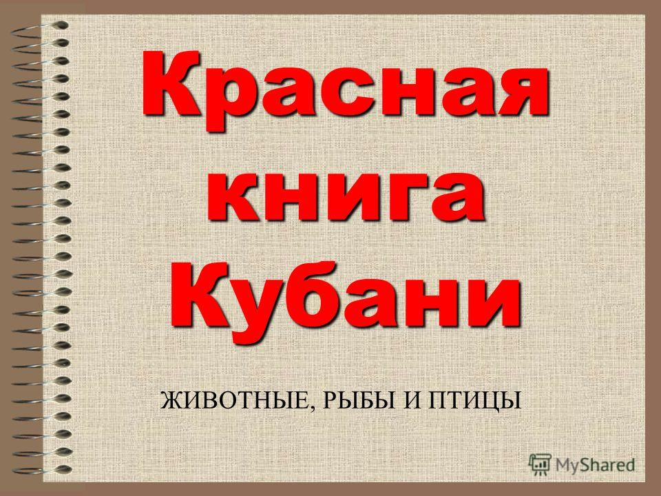 Красная книга Кубани ЖИВОТНЫЕ, РЫБЫ И ПТИЦЫ