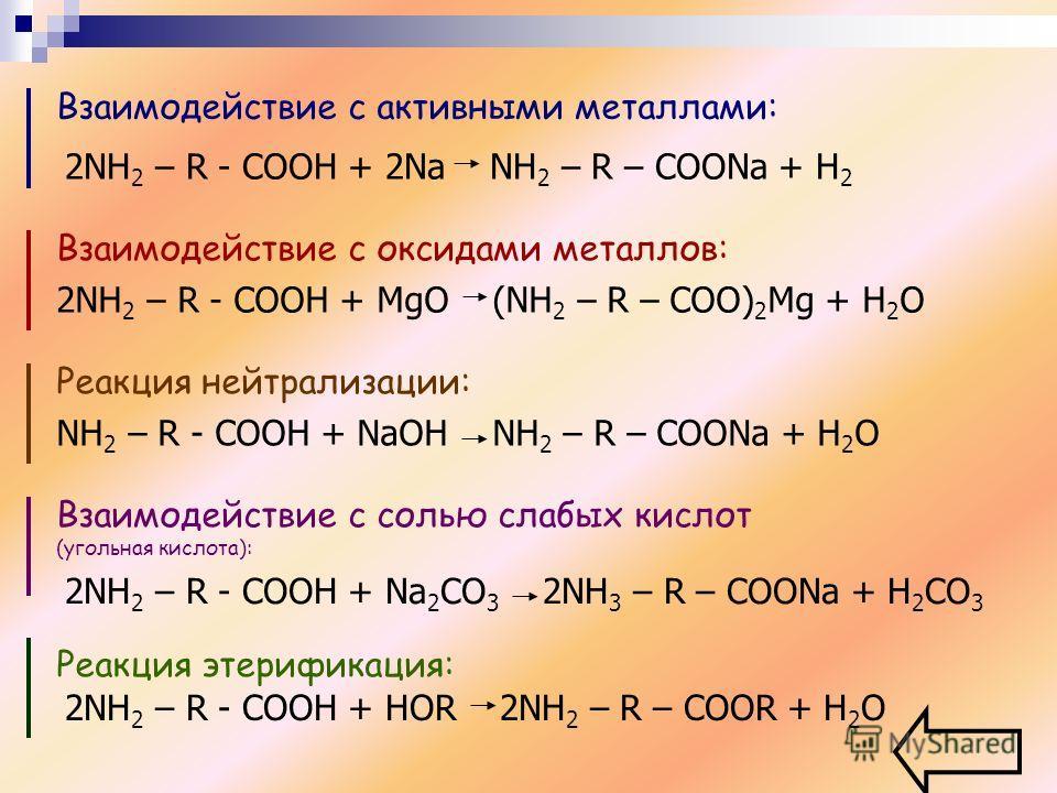 Взаимодействие с активными металлами: 2NH 2 – R - COOH + 2Na NH 2 – R – COONa + H 2 Взаимодействие с оксидами металлов: 2NH 2 – R - COOH + MgO (NH 2 – R – COO) 2 Mg + H 2 O Реакция нейтрализации: NH 2 – R - COOH + NaOH NH 2 – R – COONa + H 2 O Взаимо