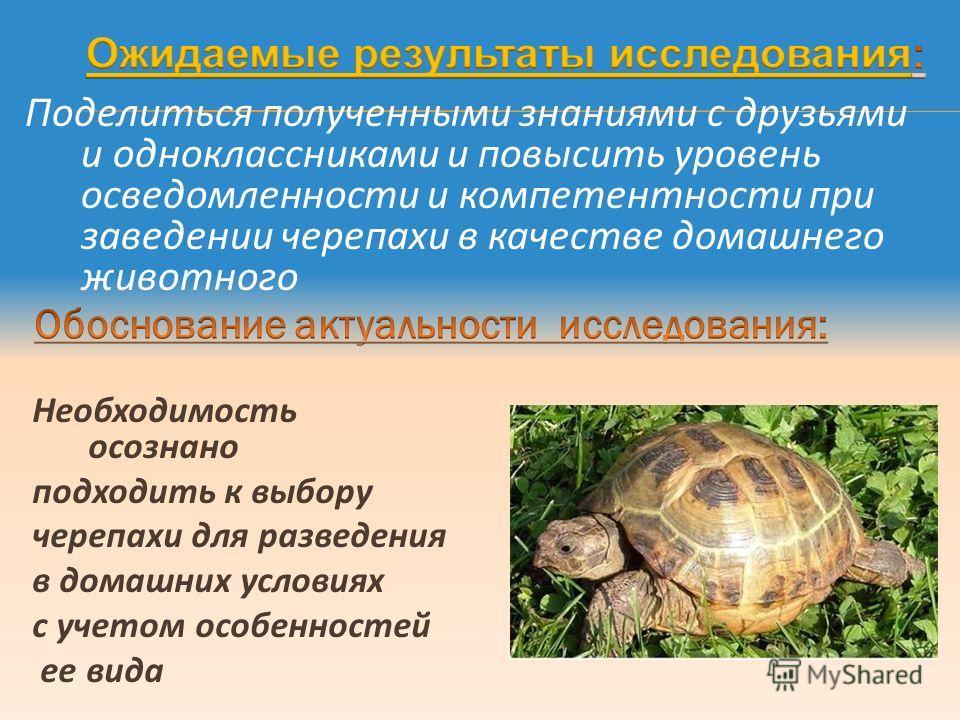 Поделиться полученными знаниями с друзьями и одноклассниками и повысить уровень осведомленности и компетентности при заведении черепахи в качестве домашнего животного Необходимость осознано подходить к выбору черепахи для разведения в домашних услови