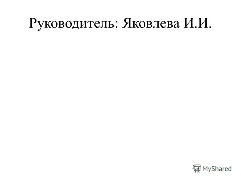 Руководитель: Яковлева И.И.