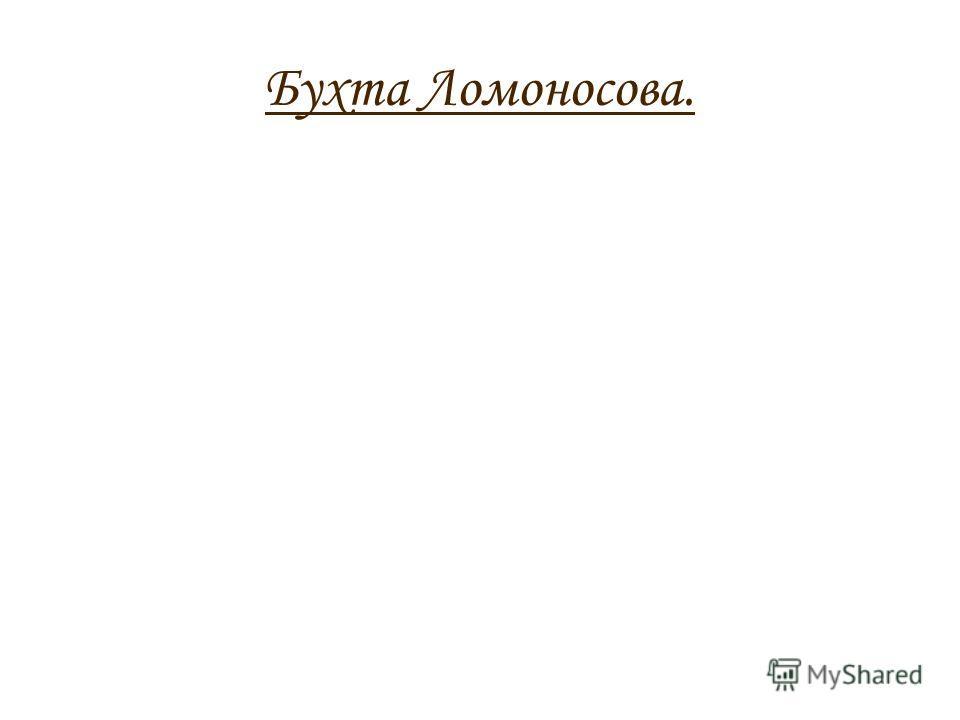 Бухта Ломоносова.