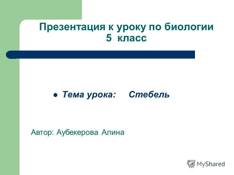 Презентация к уроку по биологии 5 класс Тема урока: Стебель Автор: Аубекерова Алина
