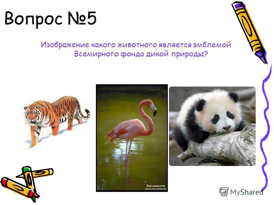 Вопрос 5 Изображение какого животного является эмблемой Всемирного фонда дикой природы?