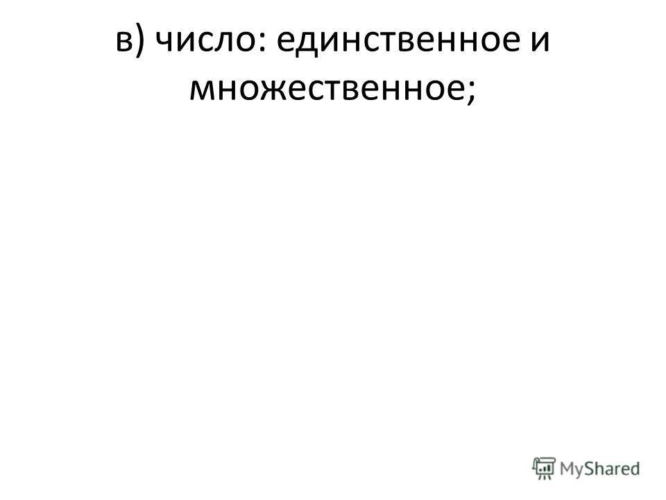 в) число: единственное и множественное;