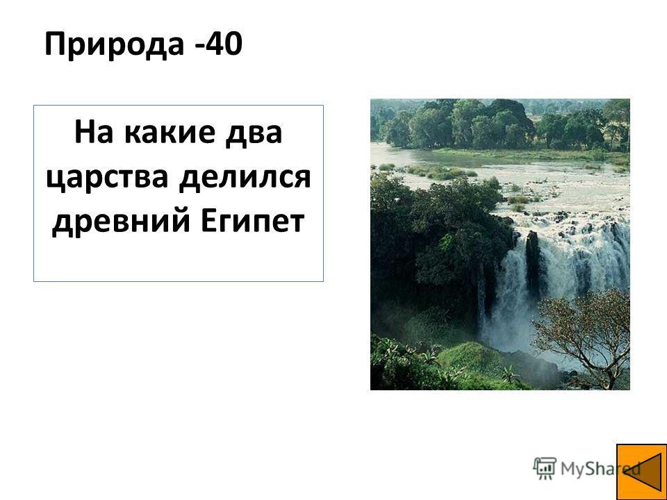 Природа -40 На какие два царства делился древний Египет