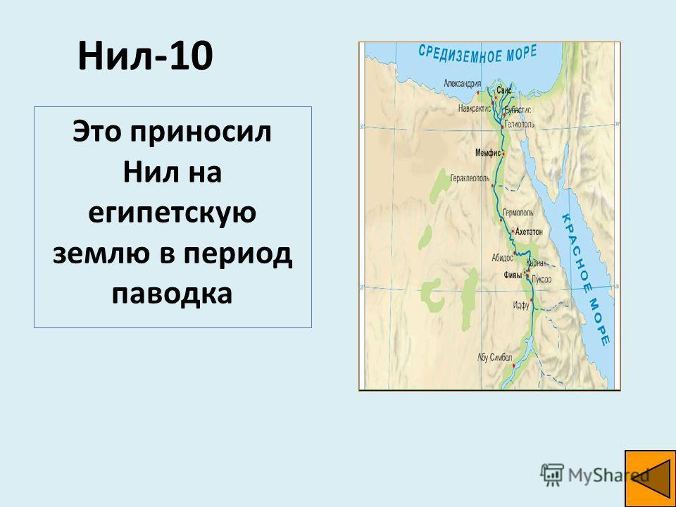 Нил-10 Это приносил Нил на египетскую землю в период паводка