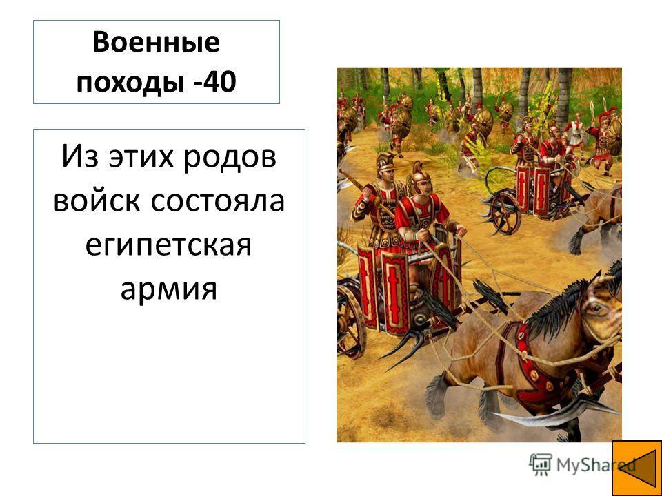 Военные походы -40 Из этих родов войск состояла египетская армия