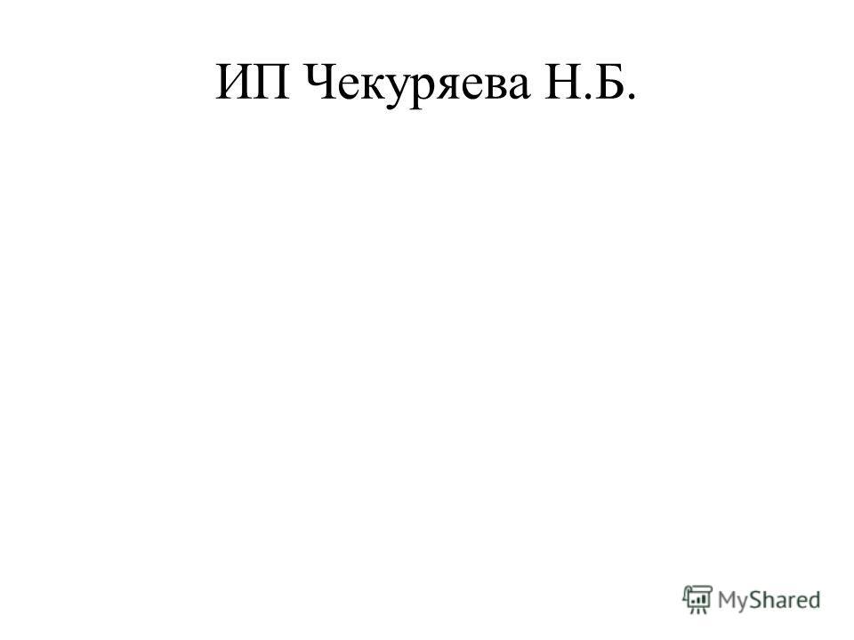 ИП Чекуряева Н.Б.