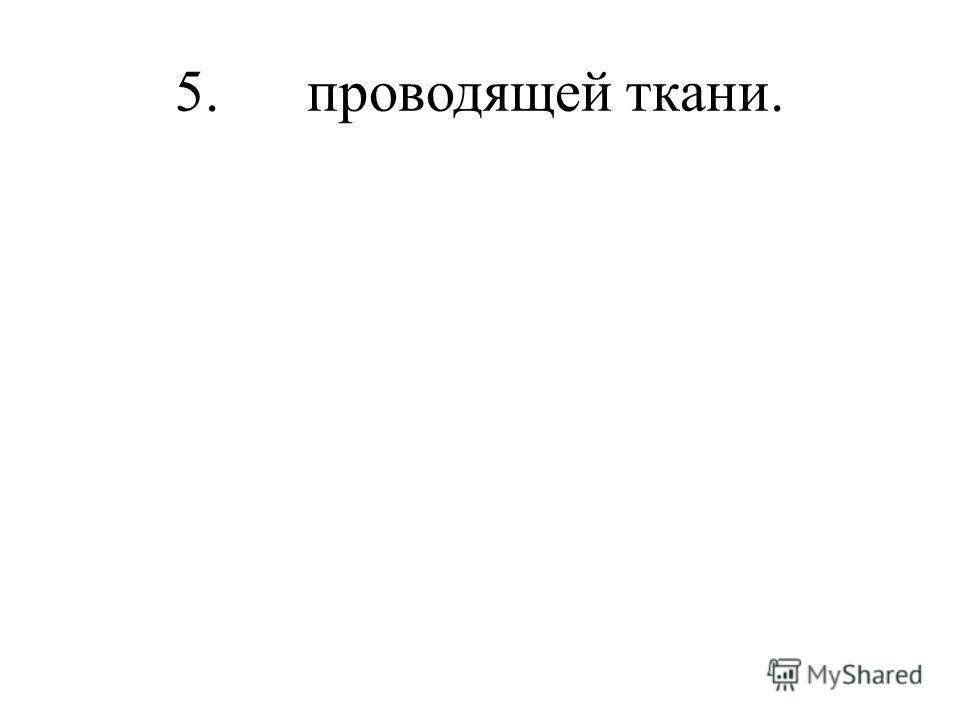 5. проводящей ткани.