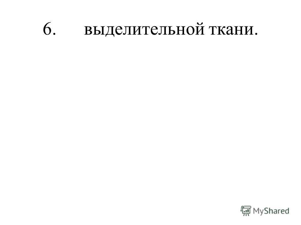 6. выделительной ткани.
