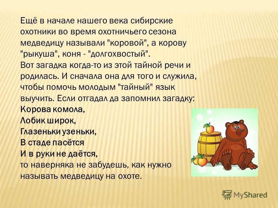 Ещё в начале нашего века сибирские охотники во время охотничьего сезона медведицу называли