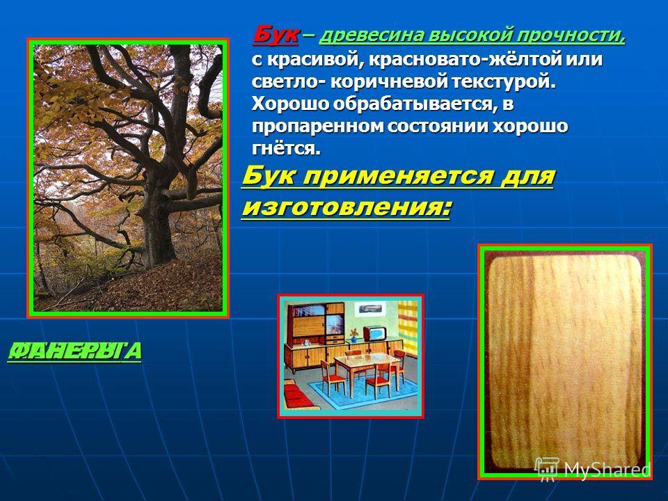 Бук – древесина высокой прочности, с красивой, красновато-жёлтой или светло- коричневой текстурой. Хорошо обрабатывается, в пропаренном состоянии хорошо гнётся. Бук применяется для изготовления: ПАРКЕТАМЕБЕЛИФАНЕРЫ