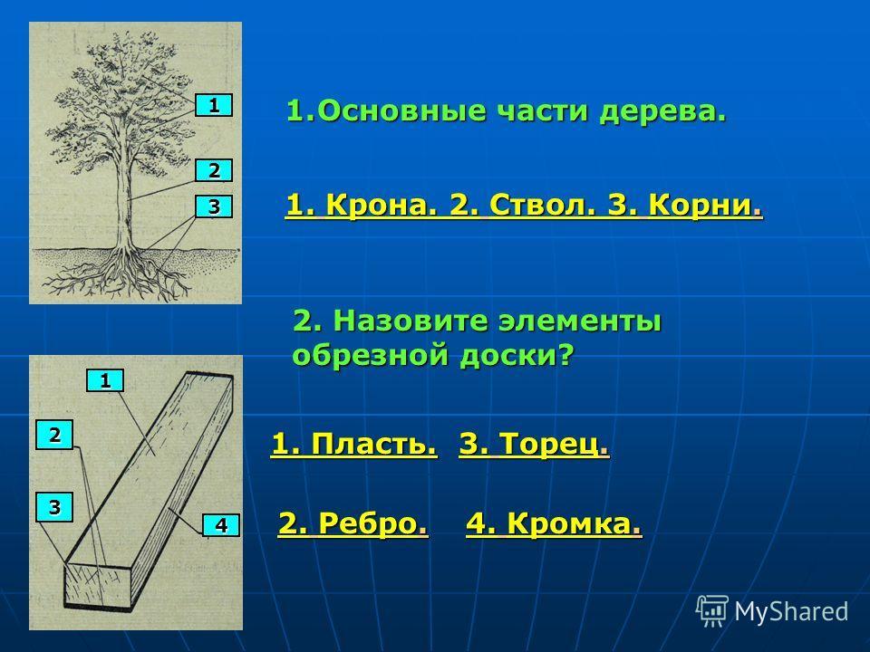 1 2 3 1.Основные части дерева. 1. Крона. 2. Ствол. 3. Корни. 1 2 3 4 2. Назовите элементы обрезной доски? 1. Пласть. 2. Ребро. 3. Торец. 4. Кромка.
