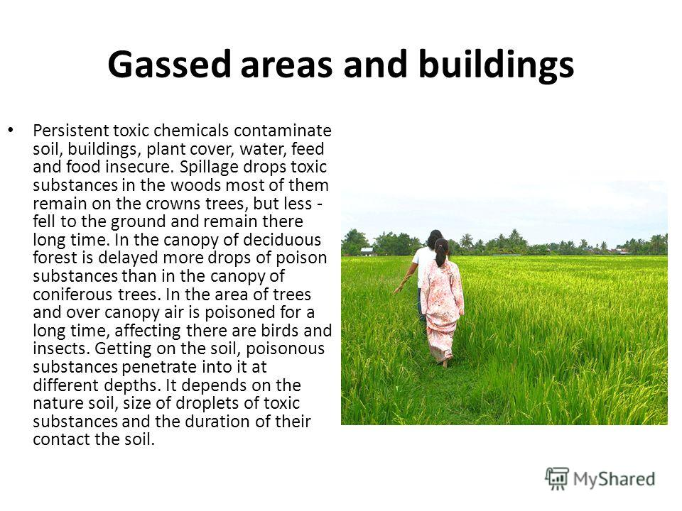 Gassed areas and buildings Persistent toxic chemicals contaminate soil, buildings, plant cover, water, feed and food insecure. Spillage drops toxic substances in the woods most of them remain on the crowns trees, but less - fell to the ground and rem