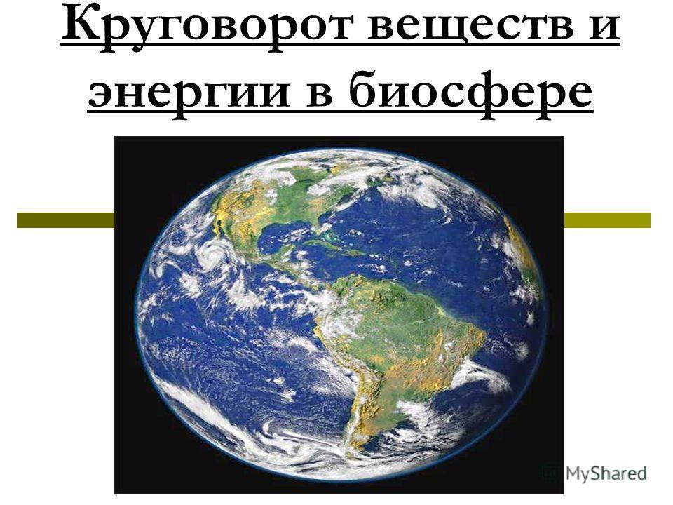 Круговорот веществ и энергии в биосфере
