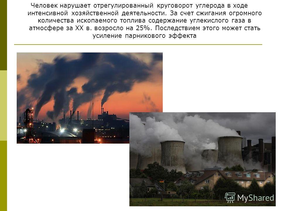 Человек нарушает отрегулированный круговорот углерода в ходе интенсивной хозяйственной деятельности. За счет сжигания огромного количества ископаемого топлива содержание углекислого газа в атмосфере за XX в. возросло на 25%. Последствием этого может