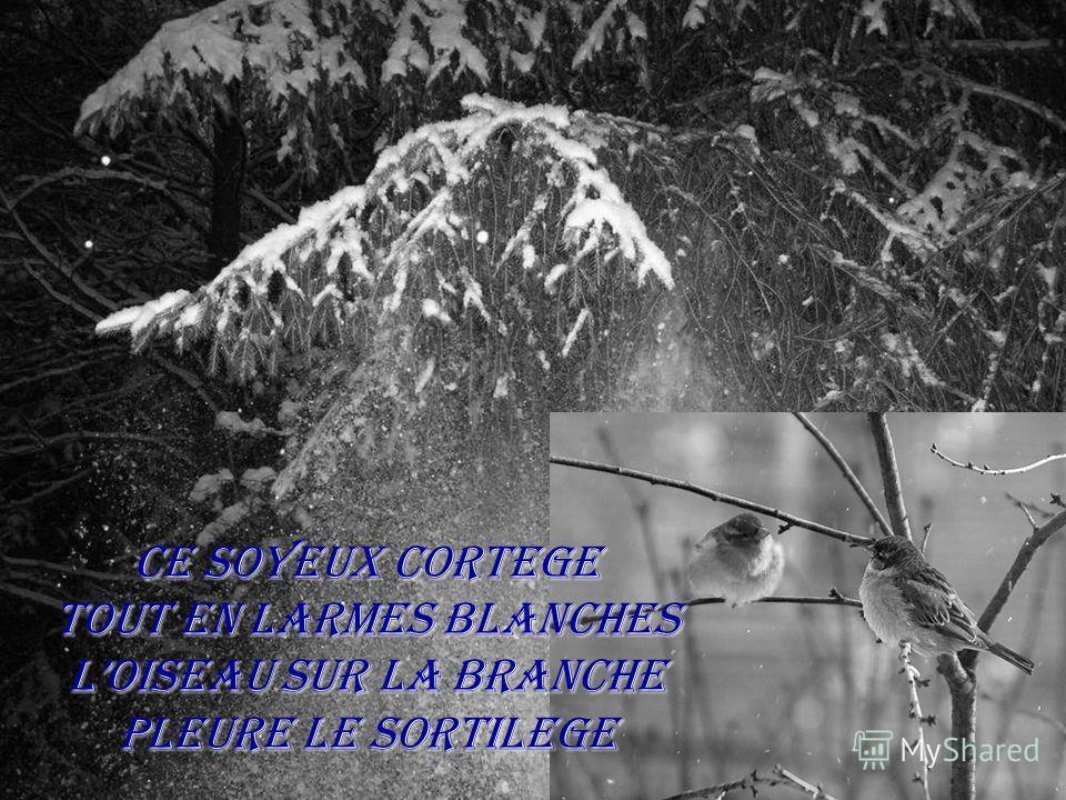 Ce soyeux cortege Tout en larmes blanches Loiseau sur la branche Pleure le sortilege