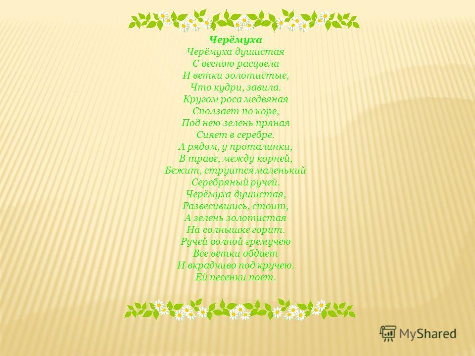 Черёмуха Черёмуха душистая С весною расцвела И ветки золотистые, Что кудри, завила. Кругом роса медвяная Сползает по коре, Под нею зелень пряная Сияет в серебре. А рядом, у проталинки, В траве, между корней, Бежит, струится маленький Серебряный ручей