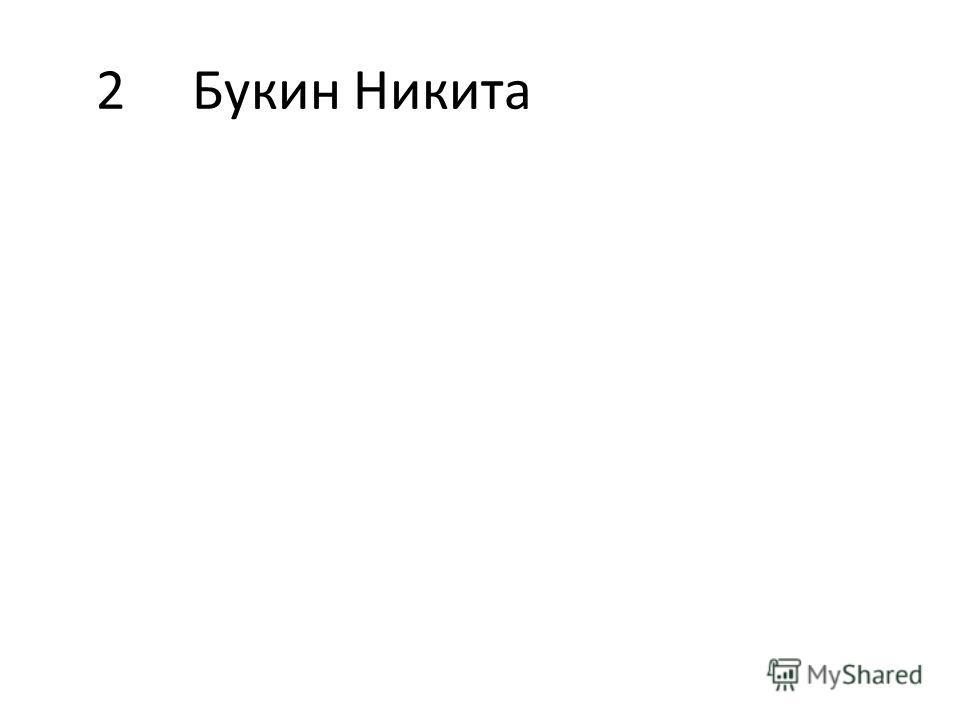 2Букин Никита