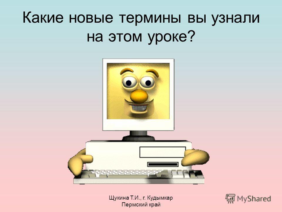 Щукина Т.И., г. Кудымкар Пермский край Какие новые термины вы узнали на этом уроке?