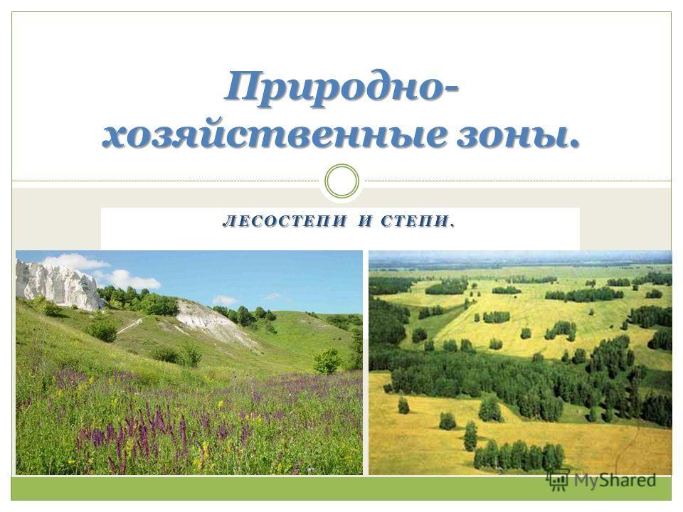 ЛЕСОСТЕПИ И СТЕПИ. Природно- хозяйственные зоны.