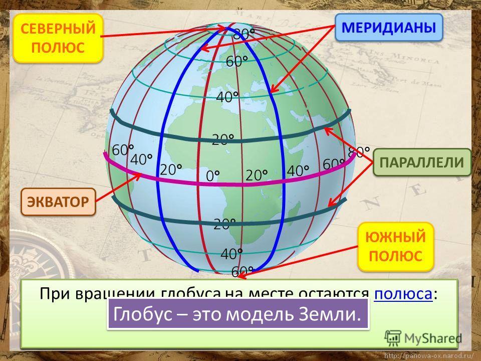 ПАРАЛЛЕЛИ МЕРИДИАНЫ ЭКВАТОР СЕВЕРНЫЙ ПОЛЮС СЕВЕРНЫЙ ПОЛЮС ЮЖНЫЙ ПОЛЮС ЮЖНЫЙ ПОЛЮС Глобус – это модель Земли.