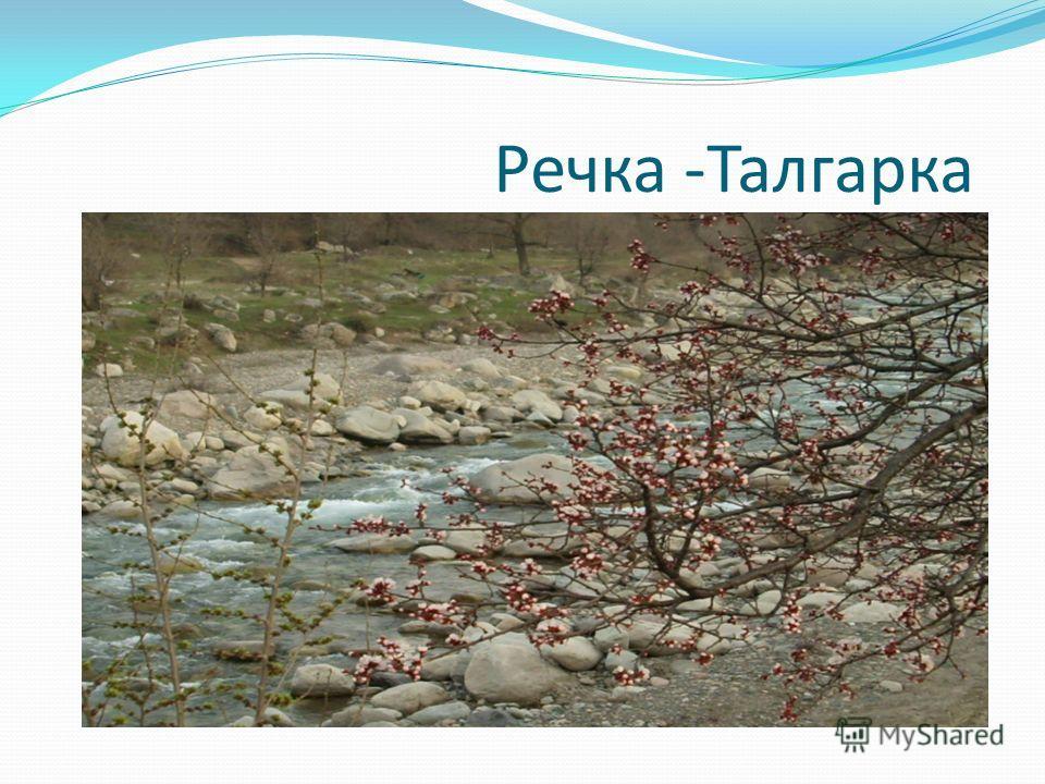 Речка -Талгарка